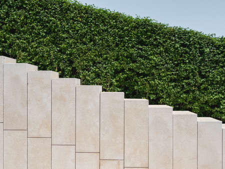 Ornamental garden with trimmed bushes and beige staircase. Geometrical background with shrubs and architectural construction. Diagonal perspective.