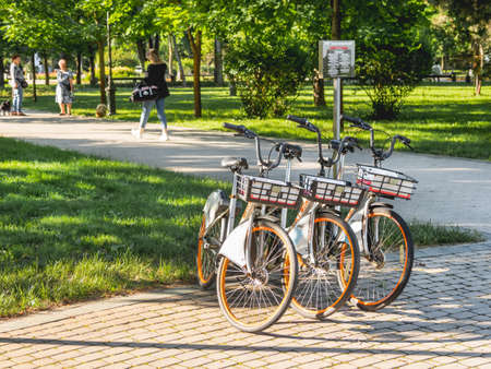 KRASNODAR, RUSSIA - June 02, 2021. Bicycles for rent in urban park. Eco-friendly and comfortable urban transport for tourists and locals.