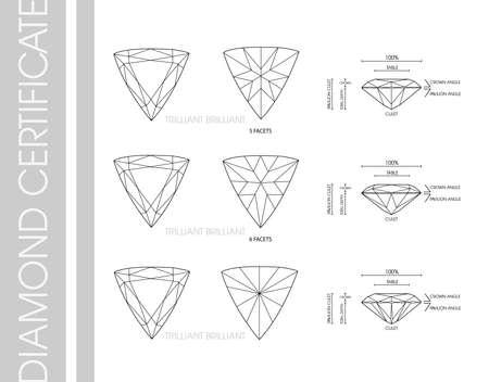 Trillion diamond shape Çizim