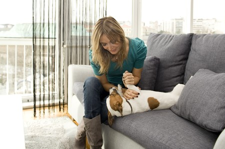 woman with her dog in her apartment Stock Photo