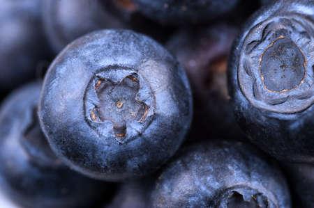 Fresh Sweet Blueberry background . Organic berries.Macro shoot, selective focus.