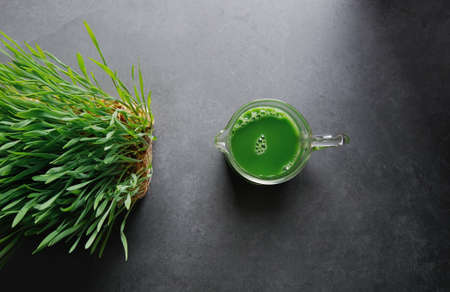 Green wheat grass juice in the glass cup  over dark gray background.