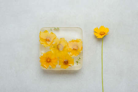 Frozen  flowers  inside the  ice cube on the gray background. Horizontal with space for text.