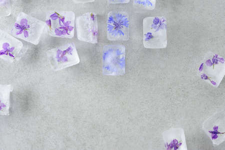 Edible summer flowers frozen in ice cubes on the gray background. Floral ice background. Flat lay, horizontal.