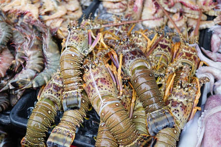 Delicious Fresh Lobster and seafood on Ice at Local Sabah Fish Market