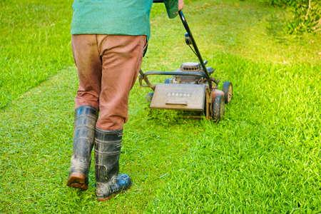 A gardener using lawn mower for cutting grass