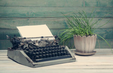 typewrite: Dirty vintage typewrite with plant on the wooden table
