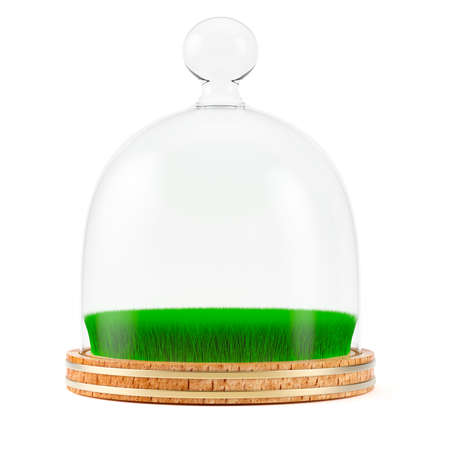 Green grass under glass dome on wooden plate isolated on white background. 3d rendering Stock Photo