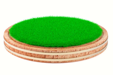 Green grass on wooden plate isolated on white background. 3d rendering