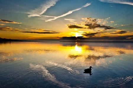 Genfer See Sonnenaufgang