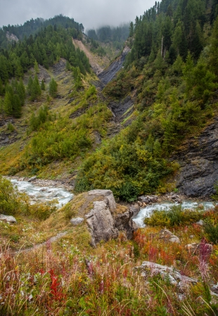 dora: El arroyo de la monta�a alpina de Dora di Ferret en Val Veny, Italia Foto de archivo