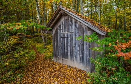A wooden hut in the forest in autumn