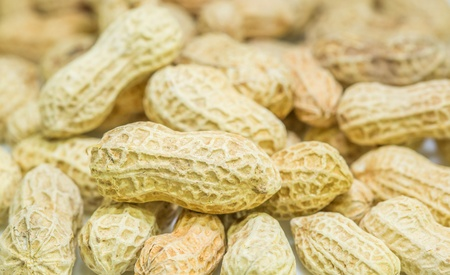 ground nuts: A group of peanuts or ground nuts Stock Photo