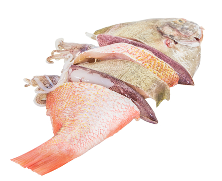 Mixed fish and squid over white background photo
