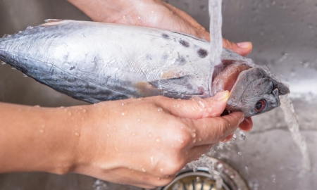 ingredients tap: Female hands washing and cleaning mackerel tune fish at the kitchen sink Stock Photo