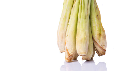 A bunch of lemongrass over white background photo