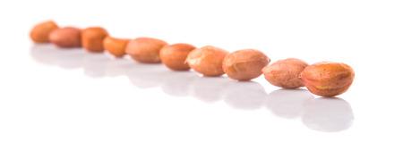 groundnut: Groundnut or peanut over white background