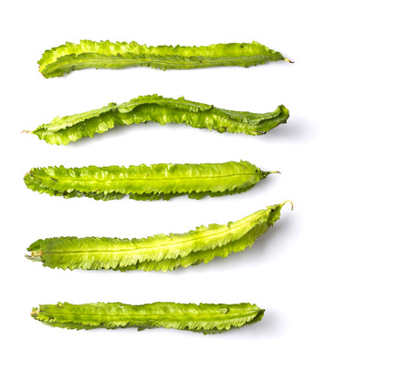 winged: Winged bean vegetable over white background