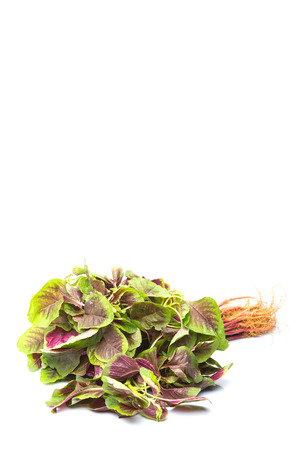 amaranthus: A bunch of Chinese red spinach over white background Stock Photo