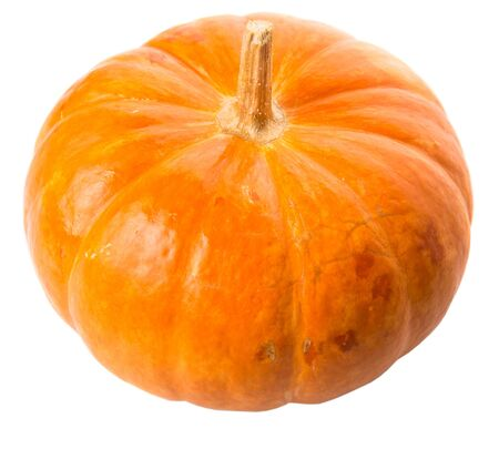 whitern: Pumpkin squash over white background