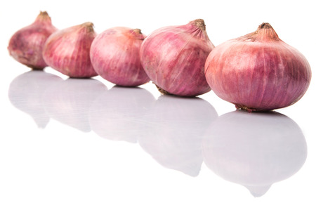 teary: Large red onion over white background