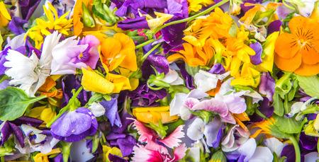 edible: Mix edible flower salad