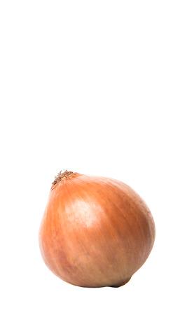 yellowrn: Dutch yellow onions over white background Stock Photo