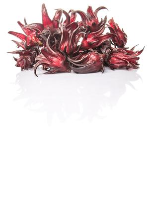 whitern: Roselle fruit over white background