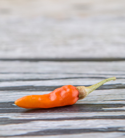 thai chili pepper: Thai chili or birds eye chili over wooden background