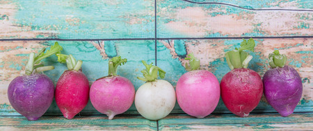 green and purple vegetables: Pink, dark red, red, and purple radish over wooden background