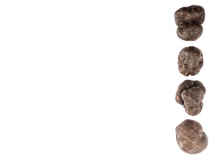 truffe blanche: Truffe noire champignons sur fond blanc