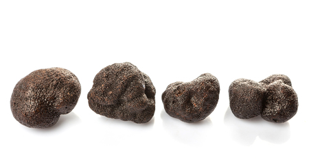 truffe blanche: Black truffle mushroom over white background