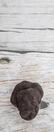 truffle: Black truffle mushroom over wooden background