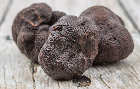 Black truffle mushroom over wooden background
