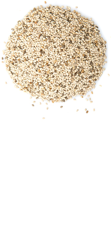 white chia: Dried white chia seed over white background