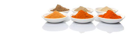 pimenton: Hot and spicy spices powder, cayenne powder, chilly powder, peppercorn powder, paprika powder, black pepper and white pepper powder in white bowl over white background Foto de archivo