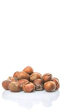avellanas: Hazelnuts on white background