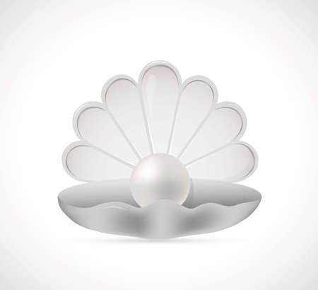 pearl shell: Illustration of shell pearl on grey backdrop Illustration