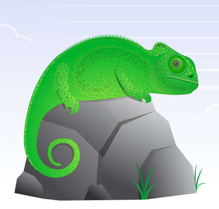 texturized: Chameleon lizard cartoon character cute and texturized Illustration