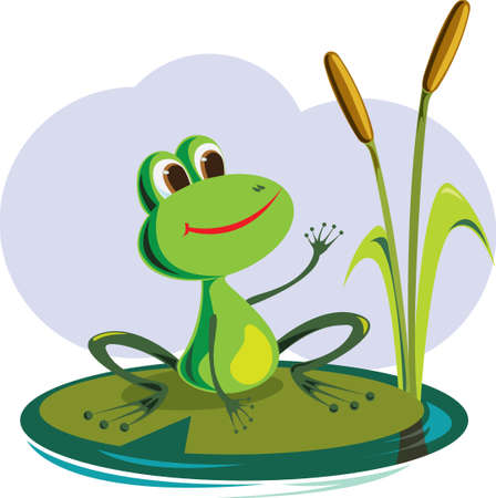 zoo amphibian: Cartoon Design.Frog vector illustration