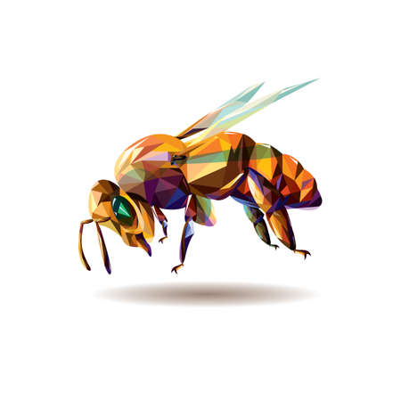 stinging: Vector illustration of a polygonal bee Illustration