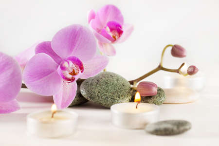 Spa still life with aromatic candles, orchid flower and stones