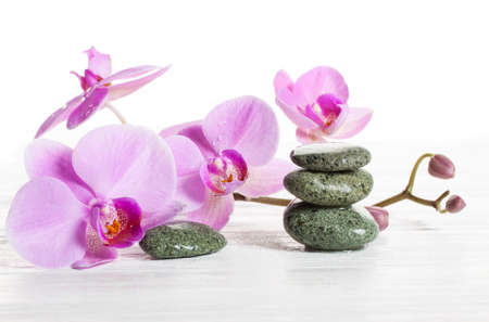 massage symbol: Orchid and spa stones on a white background. Beautiful pink flowers on a branch. drops of water