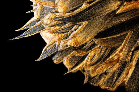 Golden and bronze brush stroke. abstract golden texture on black background Imagens