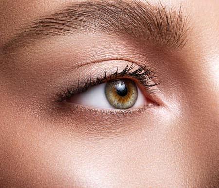 Primer plano del ojo femenino. Macro. Maquillaje y cejas perfectos. Hermosos ojos verde-marrón Foto de archivo