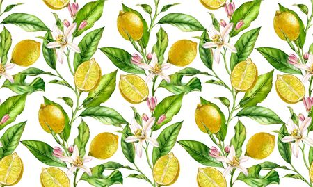 Lemon fruit seamless pattern watercolor tree branch with flowers realistic botanical floral surface design: whole half citrus leaves isolated artwork on white hand drawn for textile wallpaper