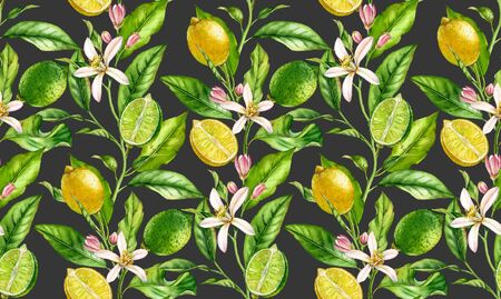 Lemon Lime branch seamless pattern watercolor fruit tree with flowers realistic botanical floral surface design: whole half citrus leaves on cream beige background hand drawn for textile wallpaper 写真素材 - 128814083