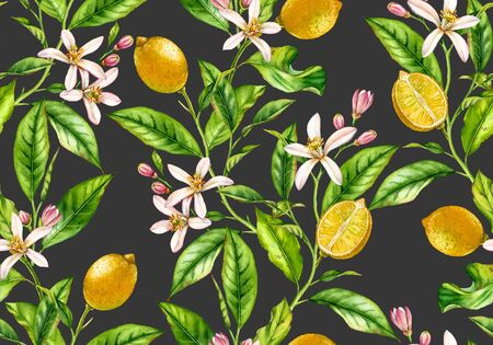 Lemon branch seamless pattern watercolor fruit tree with flowers realistic botanical floral surface design: whole half citrus leaves on cream beige background hand drawn for textile wallpaper