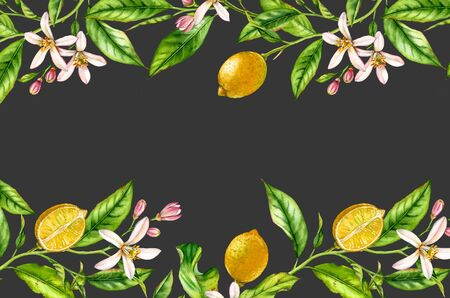 Horizontal frame Lemon fruit branch with flowers realistic botanical watercolor banner: citrus tree leaves isolated artwork on dark grey black hand drawn tropical food design arrangement text label