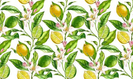 Lemon Lime fruit seamless pattern watercolor tree branch with flowers realistic botanical floral surface design: whole half citrus leaves isolated artwork on white hand drawn for textile wallpaper 写真素材